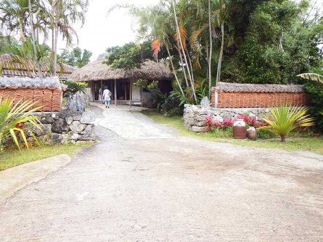 沖縄の昆布
