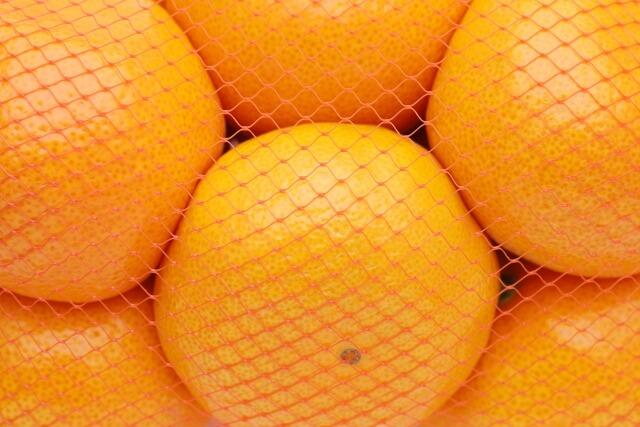 オレンジ・みかん色